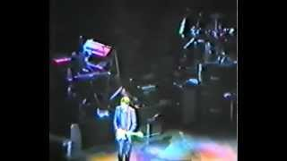 Eric Clapton & His Band (inc. MK & AC) - Concert RAH 1987