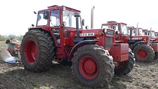 Volvo BM814 Working Hard in The Field Ploughing w/ 6-Furrow Kverneland BB85 Plough | Danish Agri