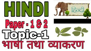 Paper 1 & 2 . Hindi topic - 1  भाषा तथा व्याकरण