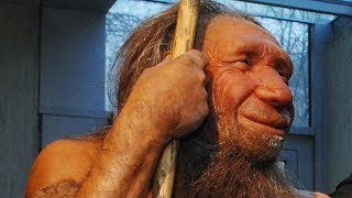 What Happened to Neanderthals?