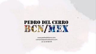 """PROMOCIONAL   PEDRO DEL CERRO """"EXPOSICIÓN BCN/MEX"""""""