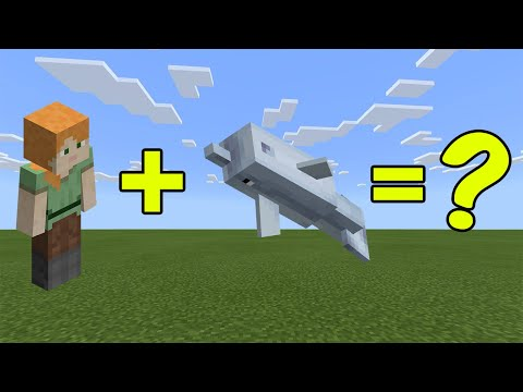 I Combined Alex And A Dolphin In Minecraft - Here's What Happened...