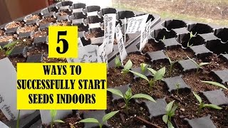 5 Easy Tips - Garden Seed Starting Indoors