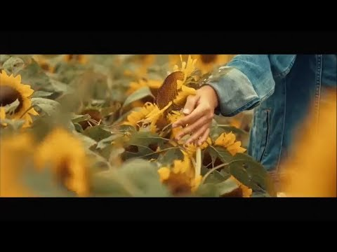 HONNE - Crying Over You (feat. Beka) | Unofficial Music Video