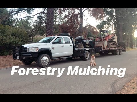 Forestry Mulching. Grinding Up Burn Piles! TL12 With FAE Mulcher Head