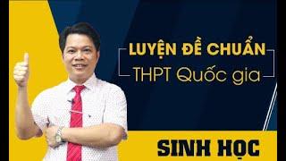 Đề minh họa năm 2019 của Bộ. TS Phan Khắc Nghệ