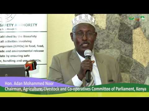 Kenyan Law-makers Ask for Homegrown GMOs