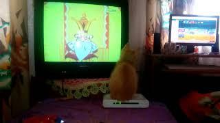 Кошка и советский мультфильм! 1