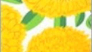 春だから。marimekkoのテキスタイルPrimavera。