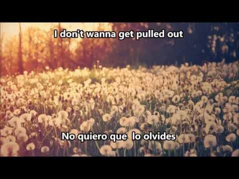 Nonsense - Madeon ft Mark Foster (subtitulado español)