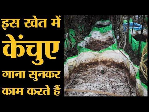 Sagar के इस Farmer का तरीका अपनाएं तो देश भर के Kisan खूब पैसे कमाएंगे | The Lallantop