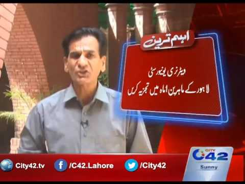 42 Breaking: Supreme Court Lahore Registry  suo moto case of supplying substandard food