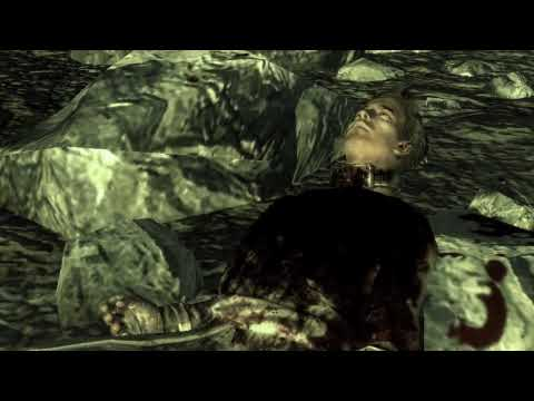 Fallout 3 - Were Still Fighting  