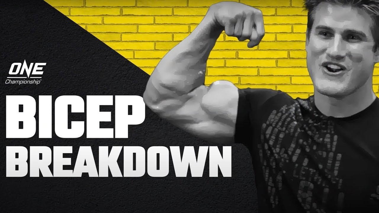 """Sage Northcutt SMASHES Egg, Fruit & More In """"Bicep Breakdown!"""""""