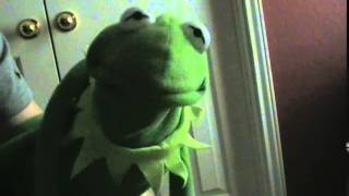 Kermit Gone Wrong