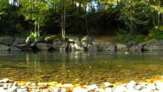 Indian  Reservation Trout fishing waters and camping life 2008 october/  Cherokee