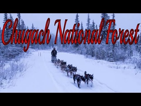 Visit Chugach National Forest, National Forest in Moose Pass, Alaska, United States