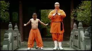 lotus & sword shaolin tai chi kung fu