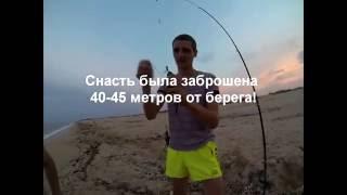 рибалка на морі ловля пеленгаса ч. 3 перший день рибалки