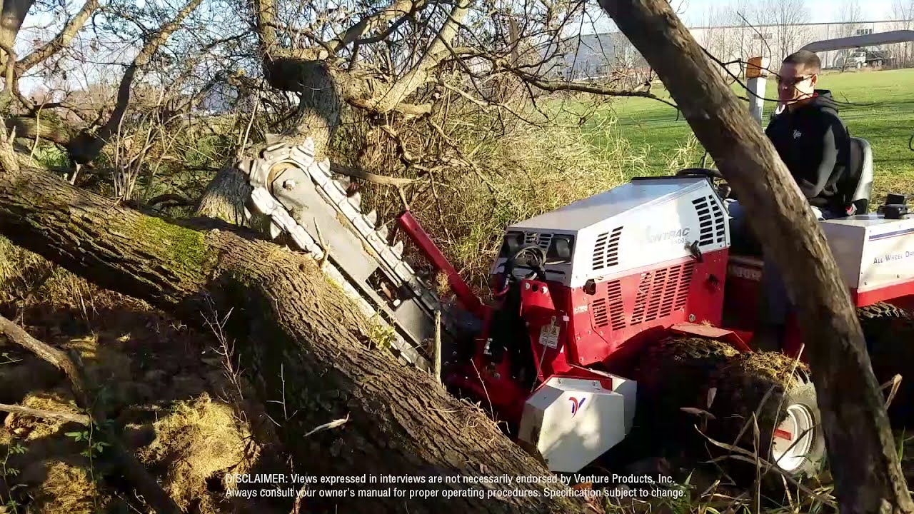Trencher Cut Through A Tree