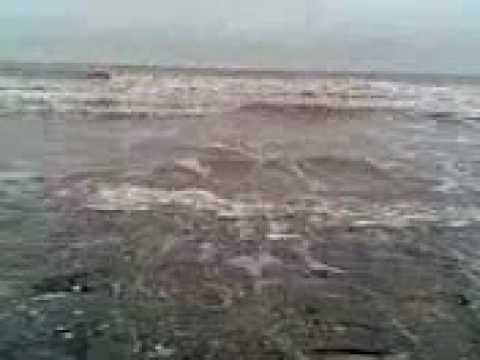 Có ai muốn xem sóng biển