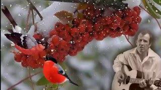 Снегири (авт. и исп.Сергей Классик)