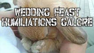 Wedding Feast Humiliations Galore (Luke 14:1-14)