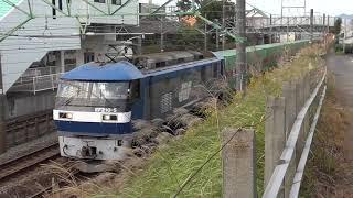 貨物列車撮影記 東海道本線 草薙~清水間 2018/10/20