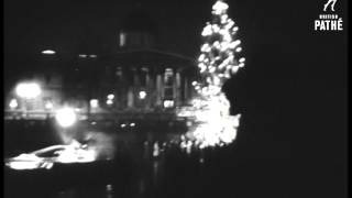 Christmas Tree In Trafalgar Square (1957)