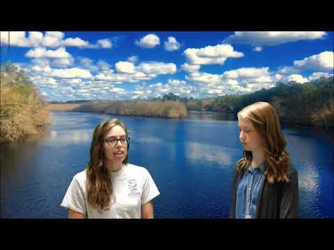 Waycross Middle School Interview - August 2017