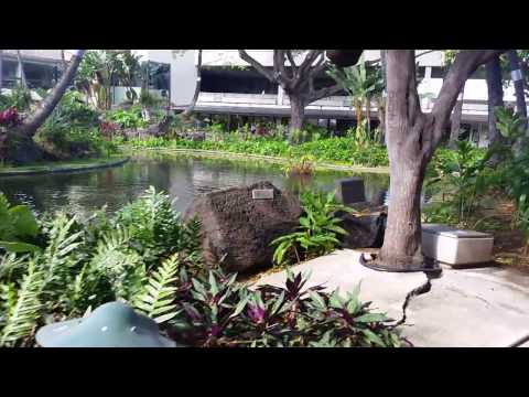 Beautiful Japanese Gardens at Honolulu International Airport, Oahu, Hawaii