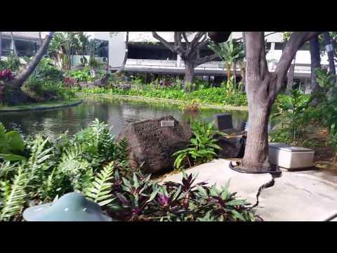 Beautiful Japanese Gardens at Honolulu International Airport, Oahu, Hawaii