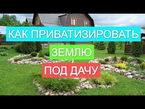 Земельный участок. Оформить земельный участок в собственность.