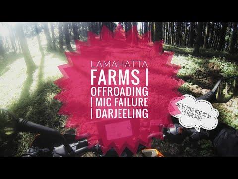 LAMAHATTA FARMS | DARJEELING | KTM DUKE 390