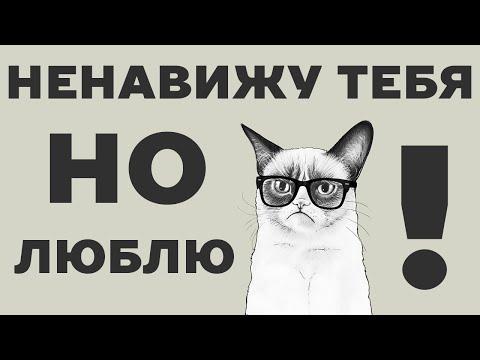 7 признаков, что кошка вас ненавидит. Почему кот шипит, кусается и убегает