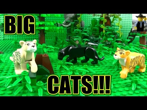 THE JAGUAR: BIG CATS - Animals Nature Wildlife (Full ...