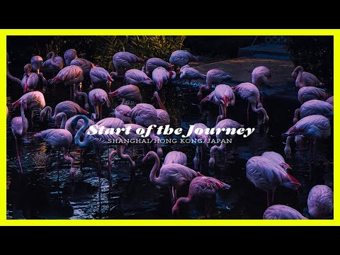 Start The Journey | Hong Kong Travel Film |