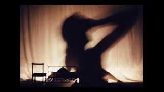 Maxime Le Forestier: La poupée ( Reprise, par Joël)