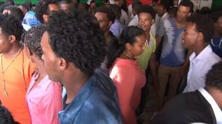 eritrean music millon band 2014
