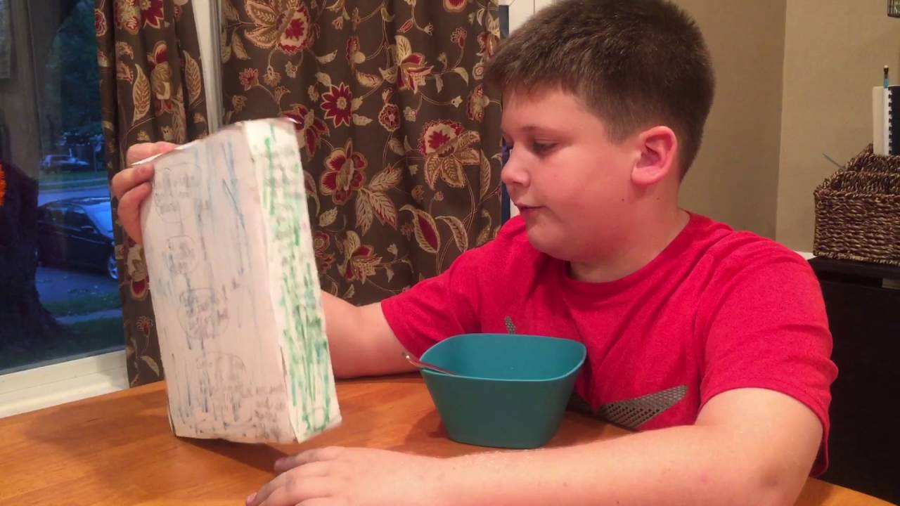 cereal box book report commercial
