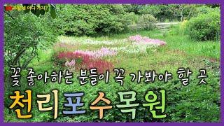 천리포수목원(충남 태안) - 꽃 좋아하시는 분들 꼭 가…