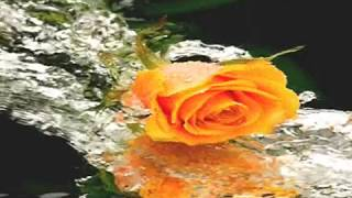 Cinderella- Don't Know What You Got (Till It's Gone) With Lyrics