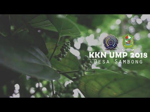 KKN UMP Kelompok 25 tahun 2018 Profil Desa Sambong