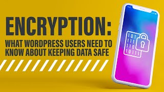 Encryption: What WordPress Users Need to Know About Keeping Data Safe