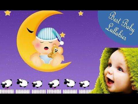 Music Lullabies For Babies To Go To Sleep Baby Songs Lyrics Baa Baa Black Sheep Baby Lullaby  Lyrics