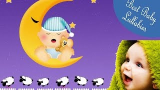 Music Lullabies For Babies To Go To Sleep Baby Songs Lyrics Baa Baa Black Sheep Baby Lullaby  Lyrics