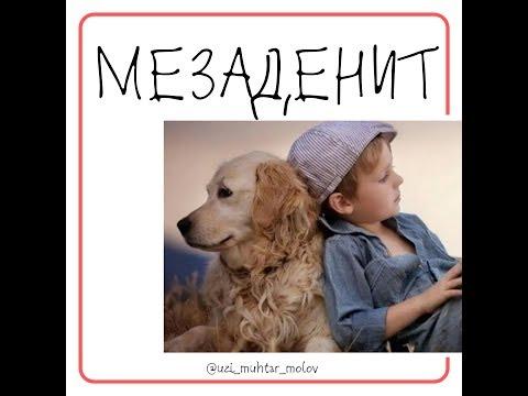 Мезаденит- воспаление брыжеечных лимфузлов на УЗИ ребенку
