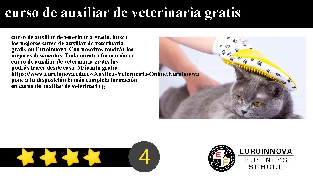 Curso Auxiliar Veterinaria Gratis Web Oficial Euroinnova