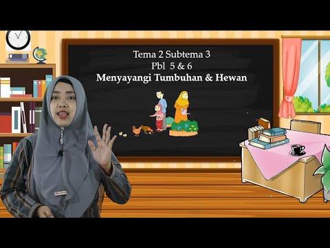 Video Pembelajaran Tematik Kelas 3 Tema 2 Subtema 3…
