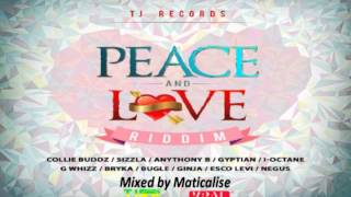 Peace And Love Riddim Mix {TJ Records} [Reggae] @Maticalise